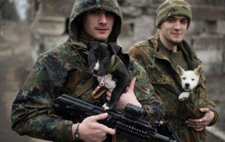 Украинская рота отказалась воевать